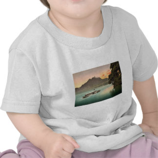 The Lake of the Four Cantons, evening tints, Lake Shirt