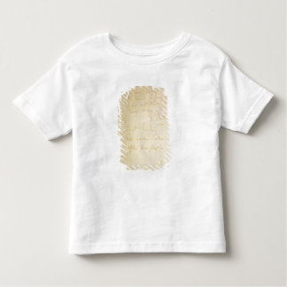 The last page of his diary, Antarctica Toddler T-Shirt