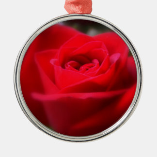 The Last Rose Of Summer Christmas Ornament