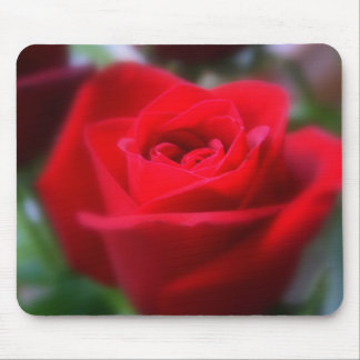 The Last Rose Of Summer Mouse Pad
