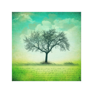 """The Last Tree 12"""" x 12"""", 1.5"""" Wrapped Canvas"""