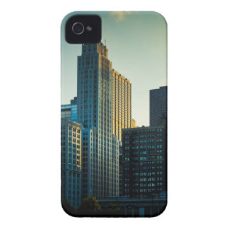 The late afternoon sun casts a golden glow on iPhone 4 cases