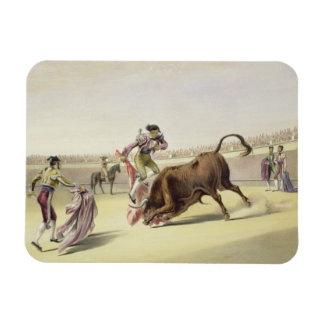The Leap or Salta Tras Cuernos, 1865 (colour litho Rectangular Photo Magnet