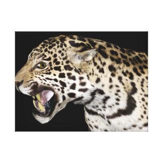 The Leopard Canvas Prints