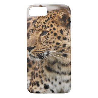 The Leopard iPhone 8/7 Case