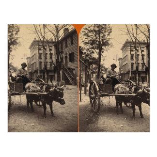 The Lightning Express, Savannah, Ga c. 1886 Postcard