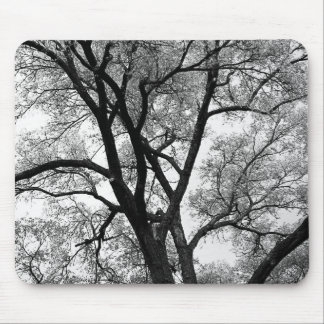 The Limbs of Nature Mouse Pad
