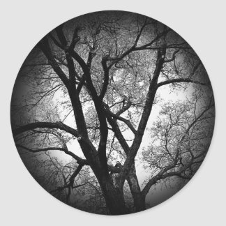 The Limbs of Nature Round Sticker