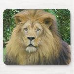 The Lion Mouse Mat