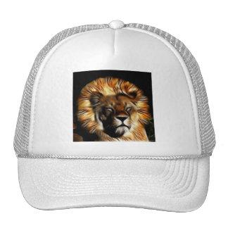 The Lion Sleeps Mesh Hat