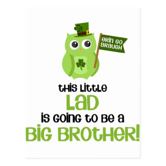 The Little Lad Big Brother Post Cards