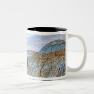 The Little Missouri River at the Little Two-Tone Coffee Mug