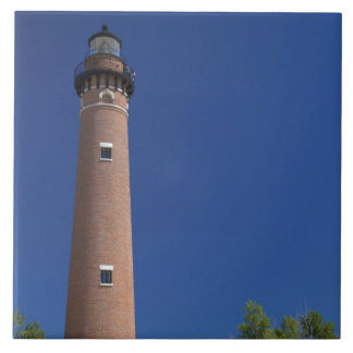 The Little Sable Point Light on Lake Michigan Tile