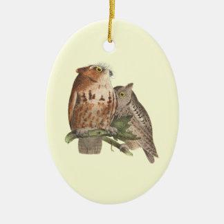The Little Screech Owl(Bubo asio) Christmas Ornament