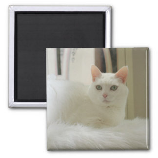 The Little White Cat Square Magnet