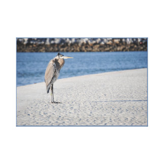 The Lone Heron Canvas Print