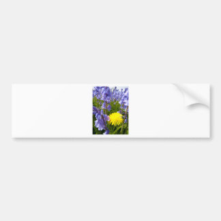 The lonely Dandelion Bumper Sticker