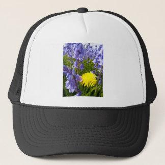 The lonely Dandelion Cap