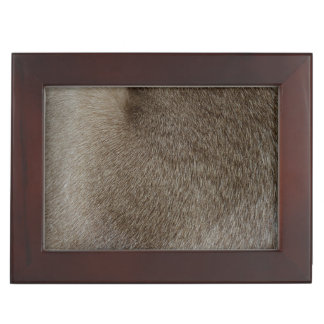The look of Luxurious Seal Point Siamese Cat Fur Memory Boxes