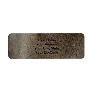 The look of Luxurious Seal Point Siamese Cat Fur Return Address Label