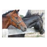 The Love Horses Custom Stationery