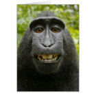 The Macaque Monkey Valentine Card