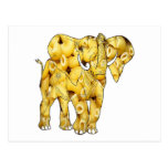 The Macaroni Noodle Elephant-postcard