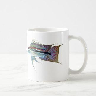 The magnetic cup of Apistgramma bitaeniata Basic White Mug