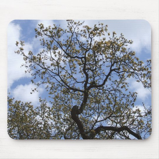 The Major Oak Mouse Pad