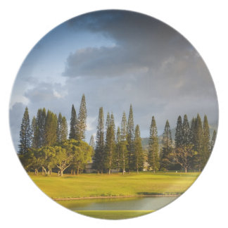 The Makai golf course in Princeville 2 Plate