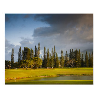 The Makai golf course in Princeville 2 Poster