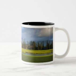 The Makai golf course in Princeville Two-Tone Coffee Mug