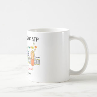 The Making Of ATP (Light-Dependent Photosynthesis) Coffee Mug