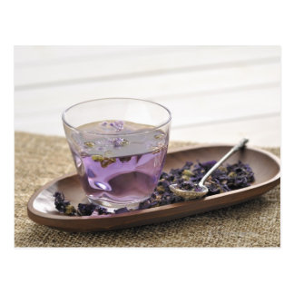 The mallow herb tea which a glass cup contains, postcard