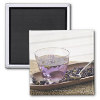 The mallow herb tea which a glass cup contains, square magnet
