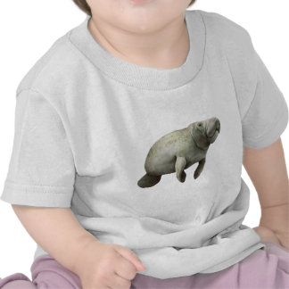 THE MANATEE CURIOSITY T SHIRTS