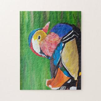 The mandarin duck puzzles