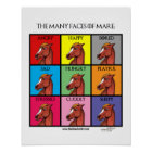 The Many Faces of Mare Poster