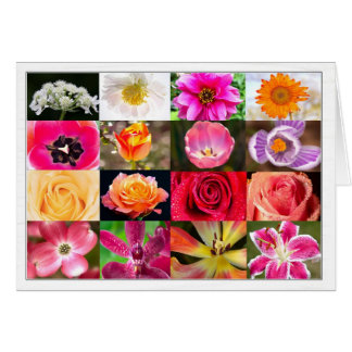The Many flowers I Want to Give You Greeting Card
