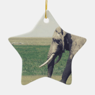 The March of a Elephant Ceramic Star Decoration