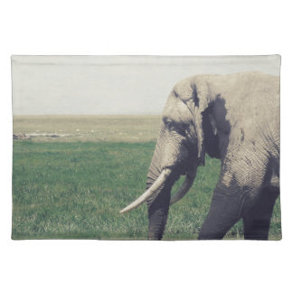 The March of a Elephant Placemat