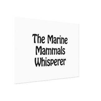 the marine mammals whisperer stretched canvas print