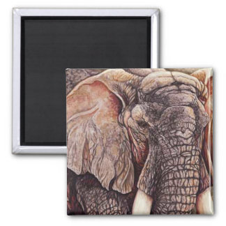 The Matriarch - African Elephant Square Magnet