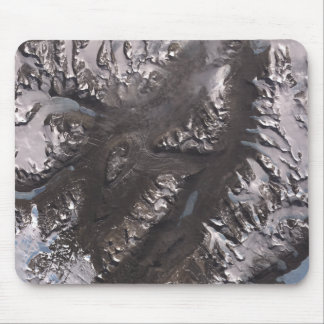 The McMurdo Dry Valleys Mouse Mat