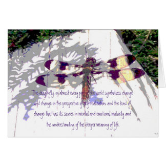 The Meaning of Life Dragonfly Greeting Card