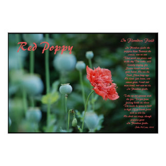 The Meaning of the Red Poppy Poster