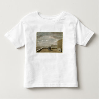 The Meteor of August 18, 1783, as seen from the Ea Toddler T-Shirt