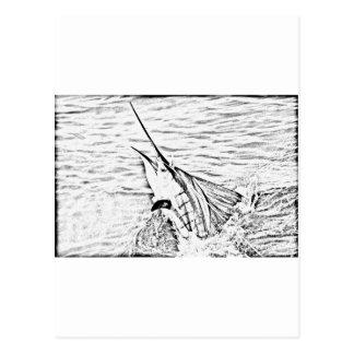 the mighty sailfish postcard
