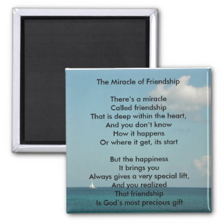 The Miracle of Friendship Magnets