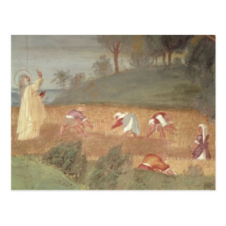 The Miracles of St. Clare of Assisi Postcards